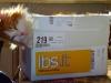 13-cat-in-the-box
