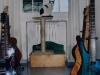 143 - Giotto il gatto rock