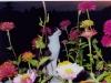 60-mi-piacciono-tanto-i-fiori-copia