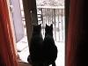 66- Sul trespolo a guardar la neve