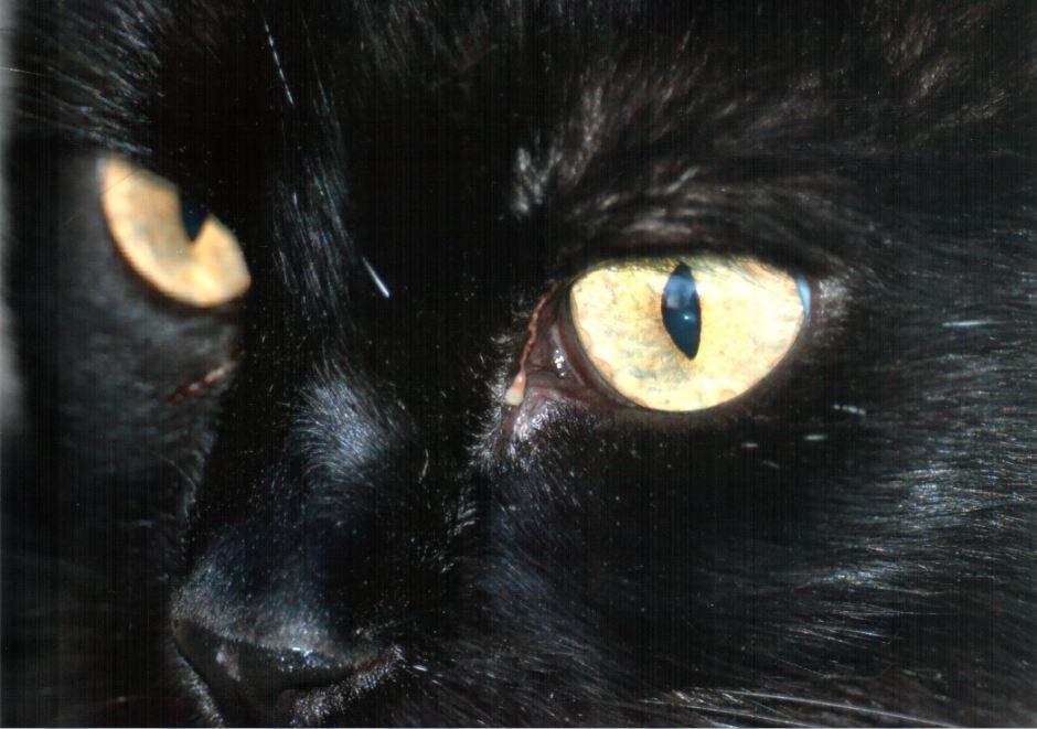 6-a-me-gli-occhi